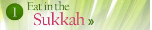 Eat in the Sukkah