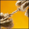 S'agripper à une corde