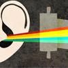 Раскрывая тему ушей